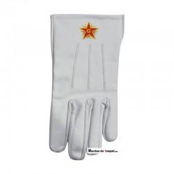 Accessoires Décors Gants en cuir blanc - Étoile Flamboyante brodée main